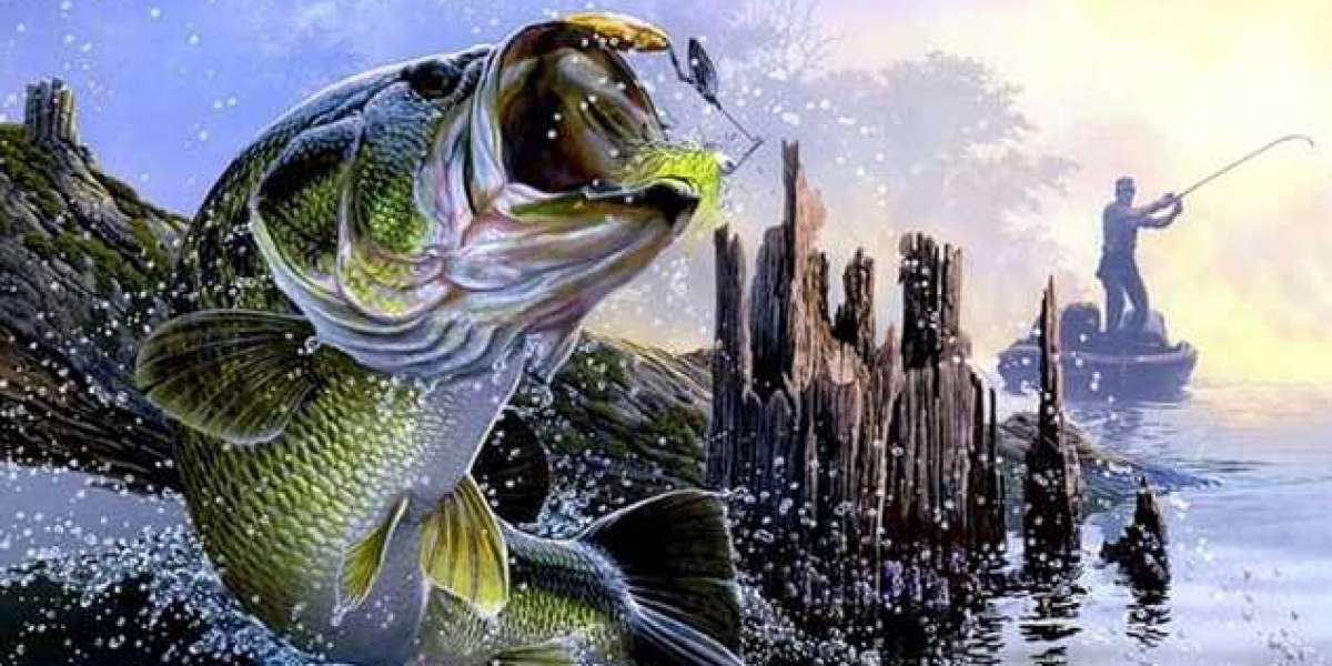 Bass Fishing - Learn the facts that can help you catch the trophies