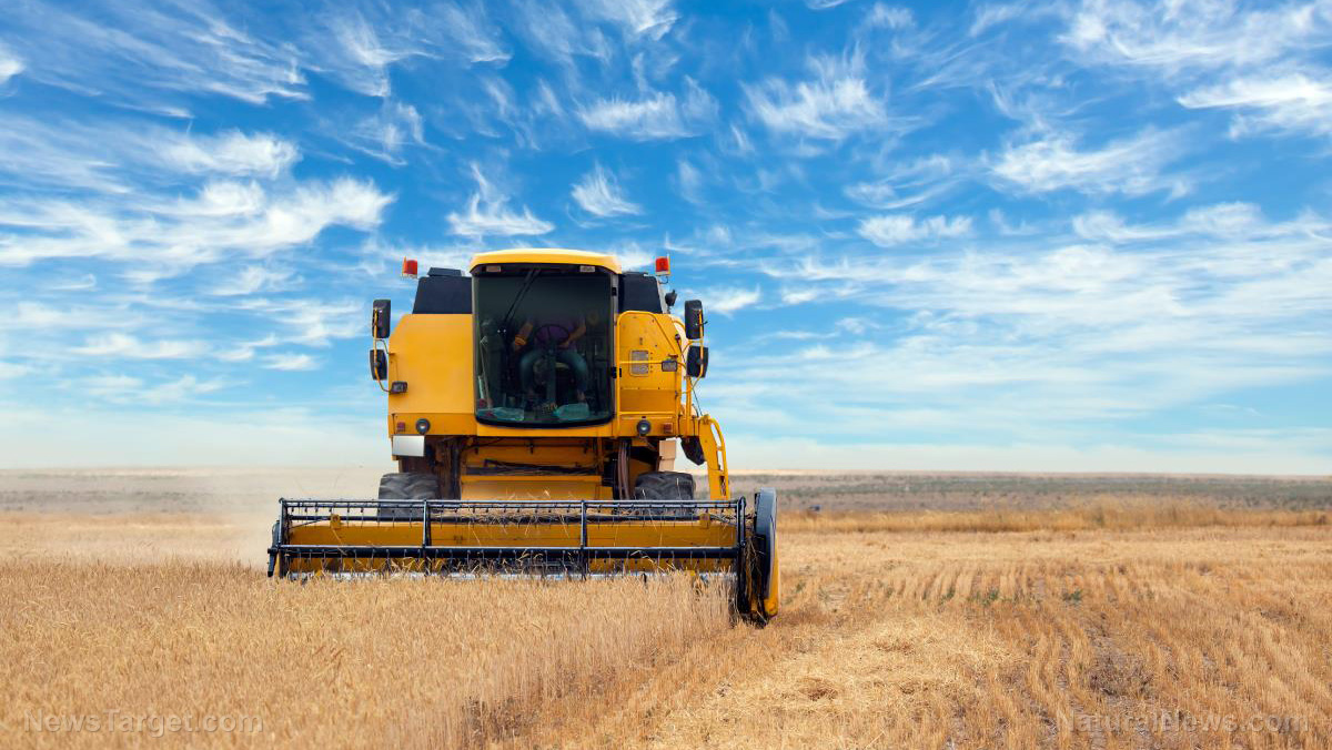 American farmers are having trouble finding replacement tractor tires amid escalating supply chain woes – NaturalNews.com
